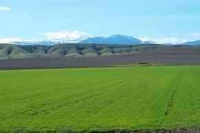 Image result for glenn county