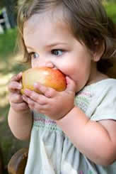 Picture of a child eating an apple.
