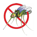 No Mosquitos (Illustration)