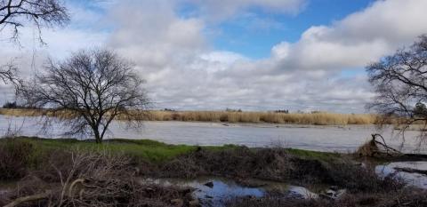 stony creek image
